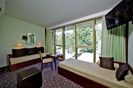 Salon de la suite Diane, vue sur la forêt